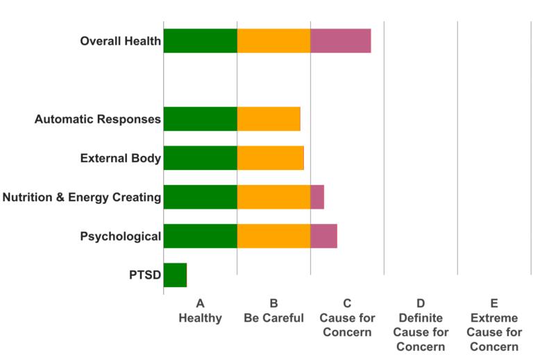 Sample Health Scores Chart